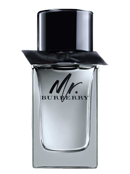 Mr Burberry for Men, edT 100ml by Burberry