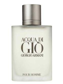 Acqua di Gio for Men, edT 100ml by Giorgio Armani